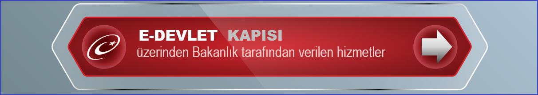 e-turkiye2